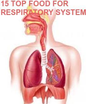 15 TOP FOOD FOR STRENGTHEN RESPIRATORY SYSTEM